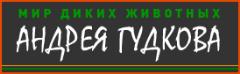 2010-03-13_104254